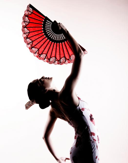 Fitflamc Fitness + Flamenco